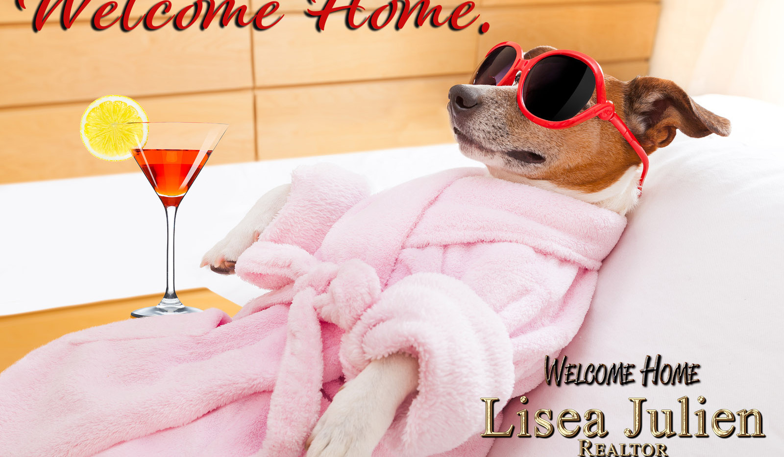 bigstock-Dog-Spa-Wellness-94814387.jpg