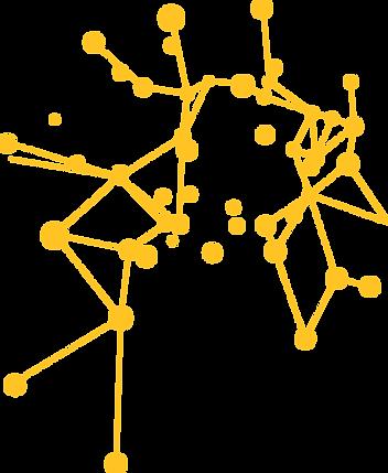 réseau léger.PNG