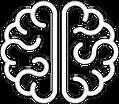 cerveau blanc.PNG