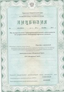 Лицензия2_1.jpg