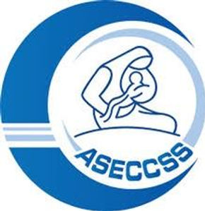 ASECCSS