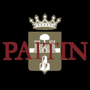paitin-logo.PNG