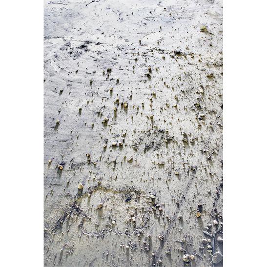 Desierto / 2011 / 150x100 cm / Archival pigment print / Edition: 3
