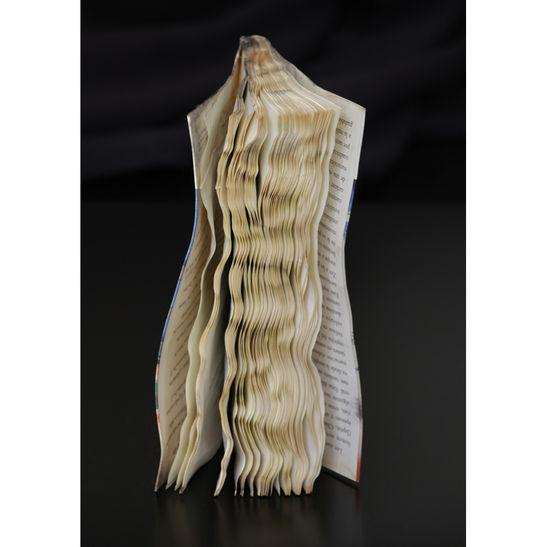 Hair / Papel Mojado series / 2013 / 70x50 cm / C-print / Edition: 5