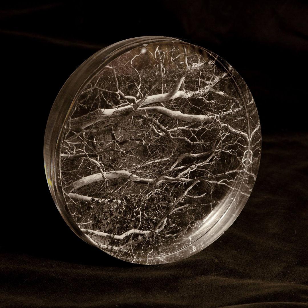 Remordimiento / Print on methacrylate / 2016 / Diameter: 20 cm / Edition: 7