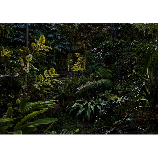 Estufafría. Lisboa / 85x120 cm / 2017 / C-print / Edition: 3