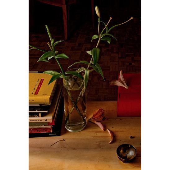 Leonard's still life / 40x30 cm / C-print / 2016 / Edition: 7