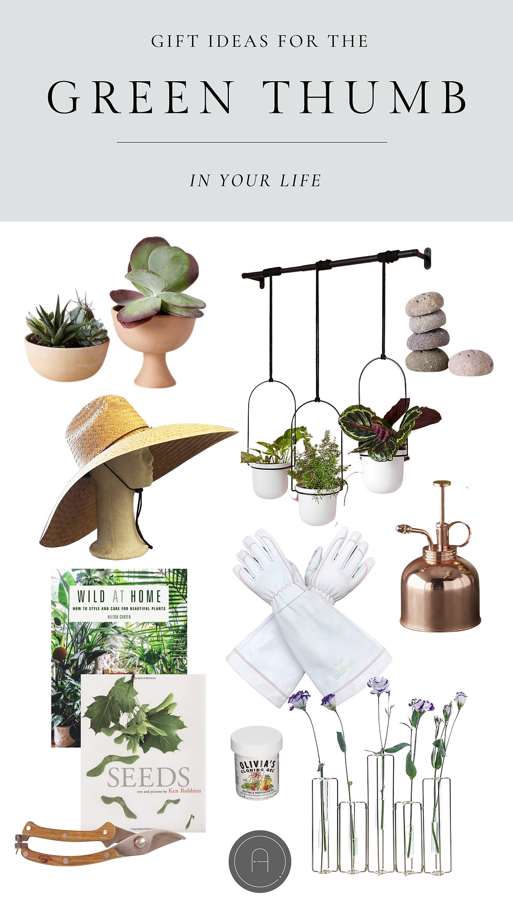 Gift ideas for the green thumb in your life terra-cotta planter vase succulent plants wall hanging cb2 crate and barrel gardening gloves leather sun hat guide to seeds house plants accordion vase viles propagating brass spritzer clippers cloning gel wood texture flower frogs floral expert