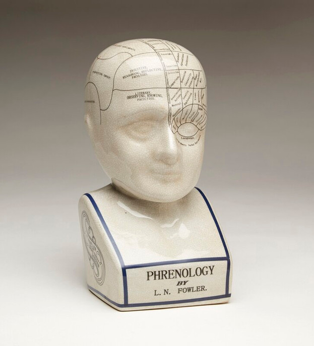 Crackle+Phrenology+Bust.jpg
