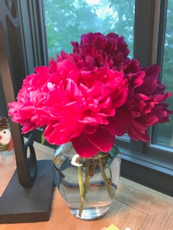 Peonies - My Favorite Flower