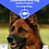 Thumbnail: Flea Control Large Dogs