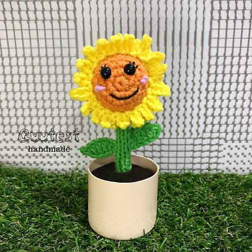 Little Miss Sunshine (Sunflower)