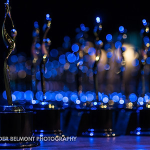 The 33rd Annual Arty Awards