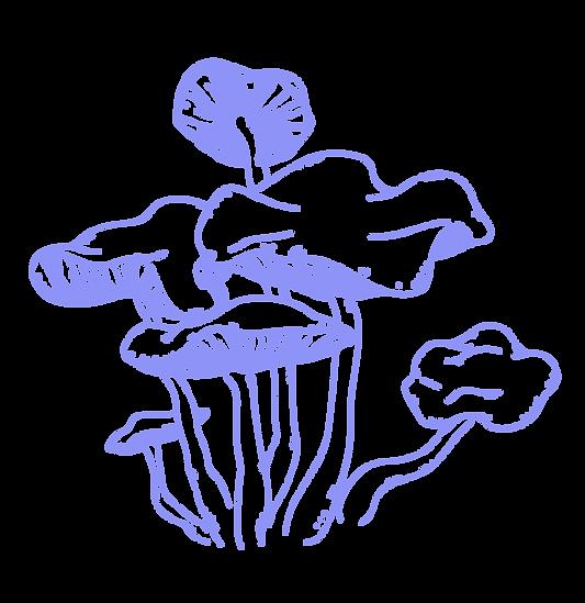 WEIRD PLANTS - OCT 20-02.png