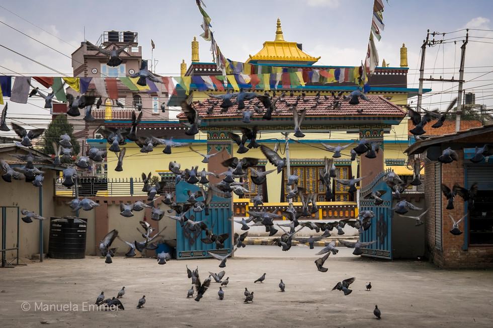 ManuelaEmmer Nepal-206.jpg
