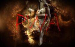 Pro Warrior Aliance