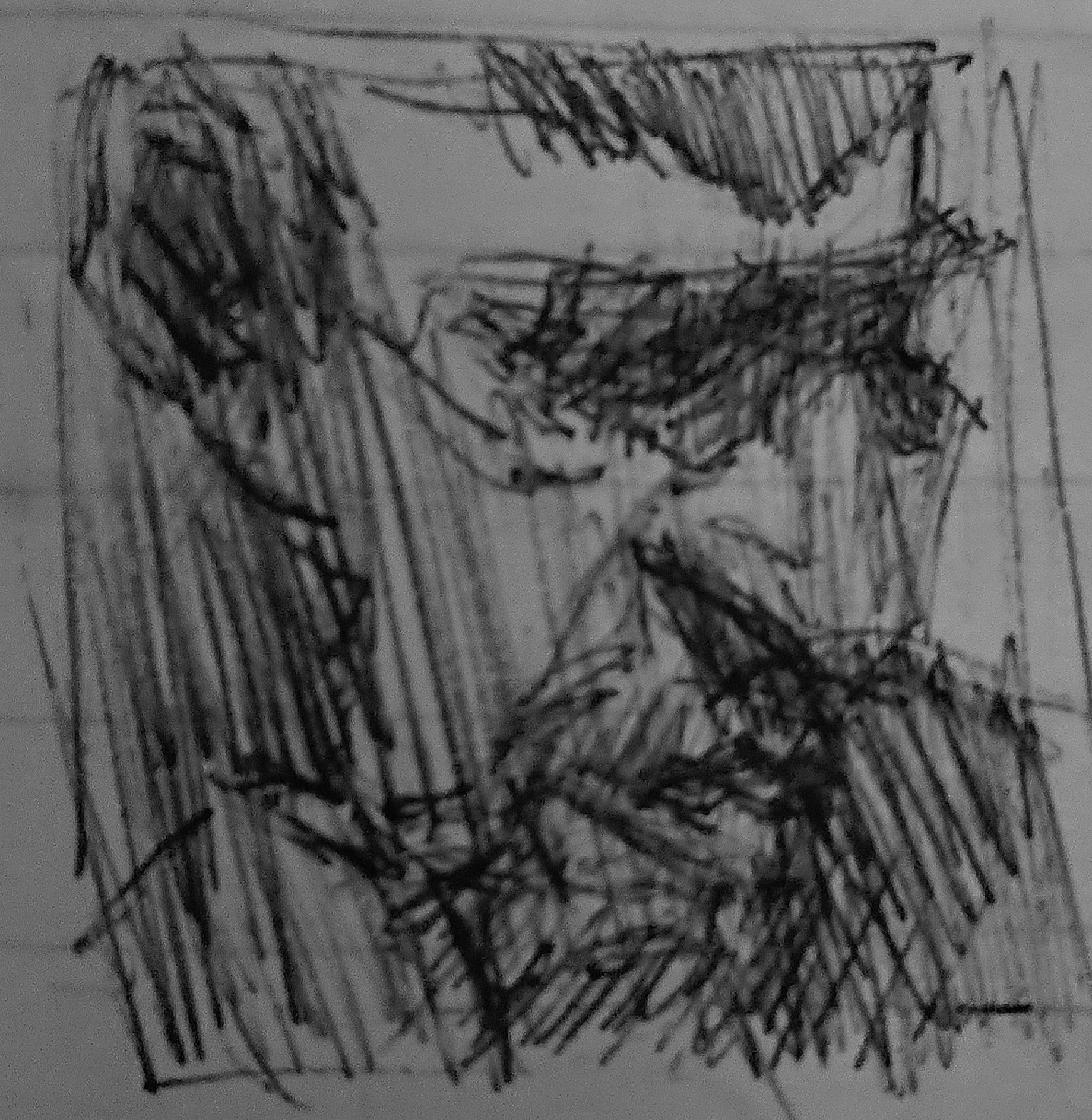 Tutored Portrait Life Drawing