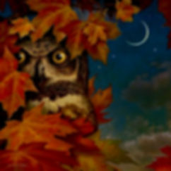 autumn owl darker 2.jpg