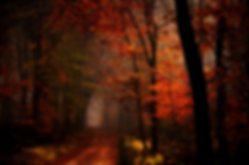 dark_autumn_by_nelleke-d8tbosc.png