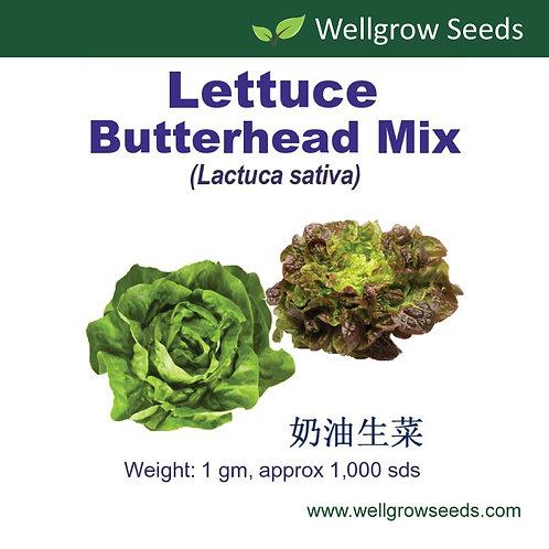 Lettuce Butterhead Mix