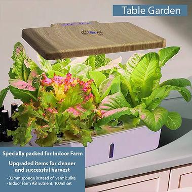 Table Garden 1.jpg