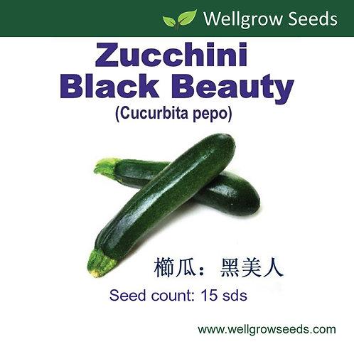 Zucchini Black Beauty
