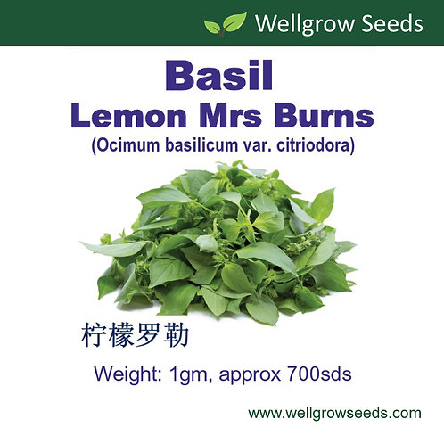 Basil Lemon Mrs Burns