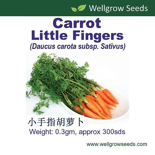 Carrot Little Fingers