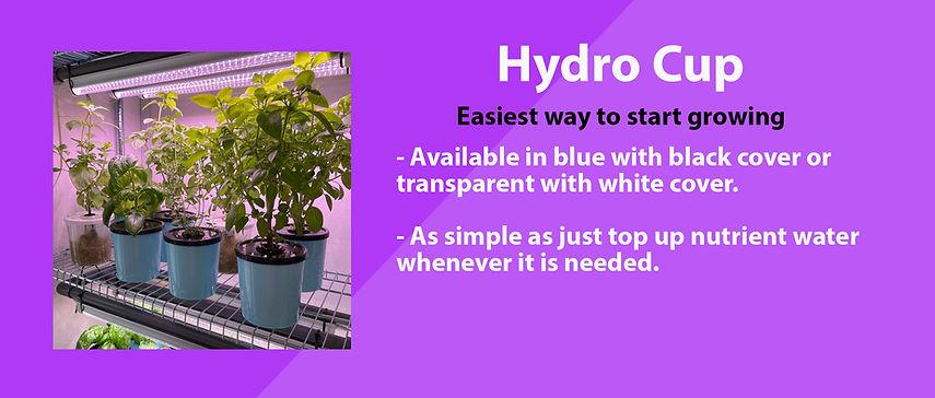 Hydro Cup.jpg
