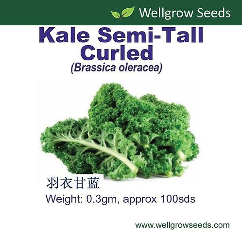 Kale Semi-Tall Curled