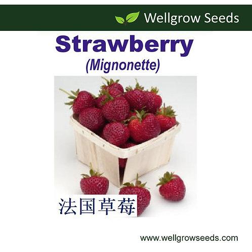 Strawberry Mignonette