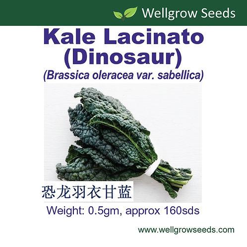Kale Lacinato (Dinosaur)