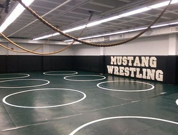 wrestling picture.jpg