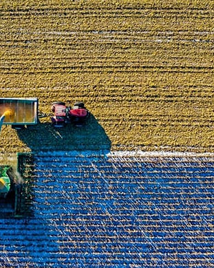 farmer-English.jpg
