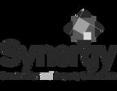 Synergy-Header-Logo_edited.png