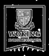 woking-borough-council-logo_edited.png