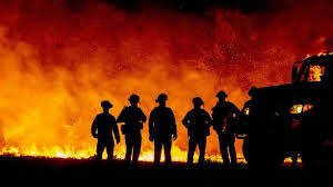 incendies 2.jpg