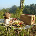 picnic-singlewoman.jpg