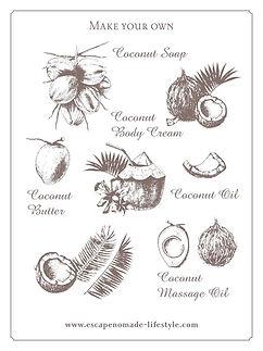 coconut_academy4.jpg