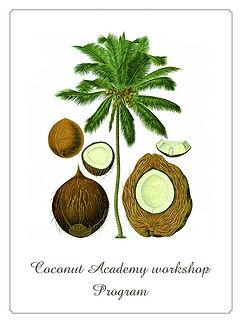 coconut_academy1.jpg