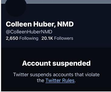 Twitter Nov suspension (2).png