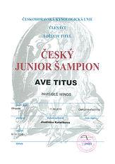 Czech Junior Champion
