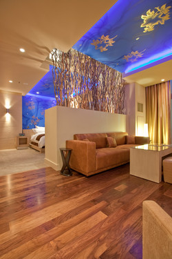 Mr. Gold living room - credit Erik Kabik