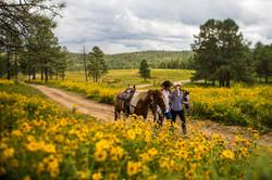 58A4011_Horseback Riding in Field
