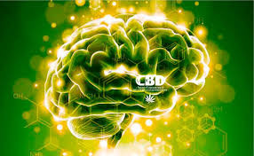 CBD Oil for Epilepsy Treatment