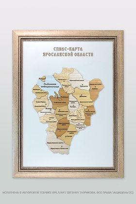 Спилс-карта Ярославской области стандарт плюс