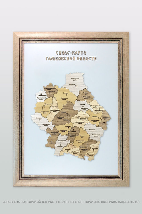 Спилс-карта Тамбовской области стандарт плюс