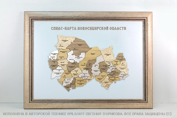 Спилс-карта Новосибирской области стандарт плюс