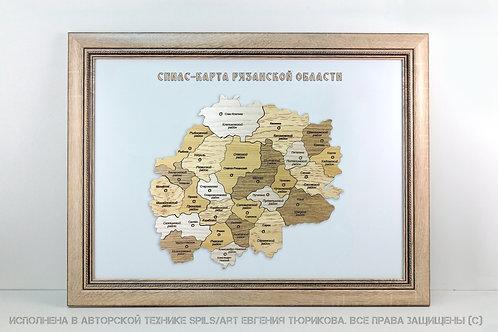 Спилс-карта Рязанской области стандарт плюс