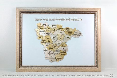 Спилс-карта Воронежской области стандарт плюс